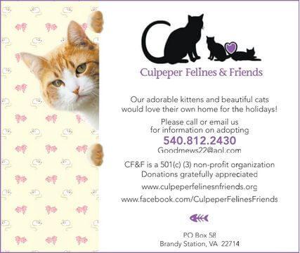 Culpepper Felines